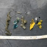 Plastic and Balloons found in Green Sea Turtle