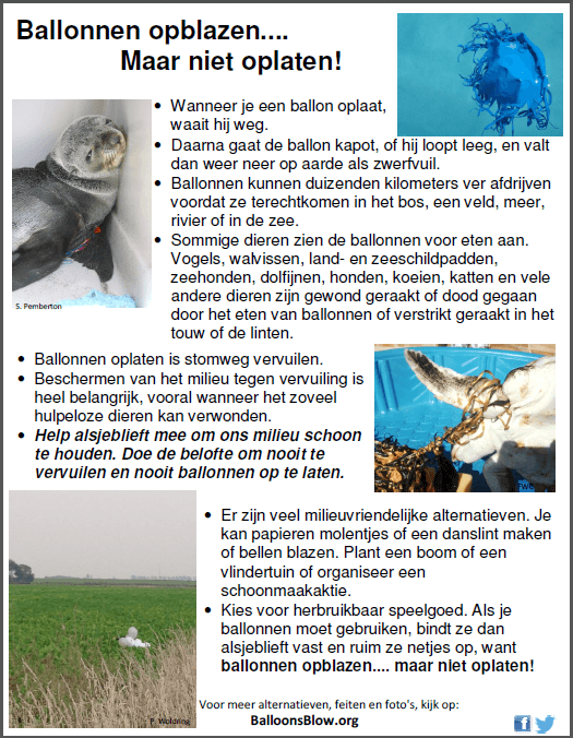 Balloons Blow Fact Sheet Dutch