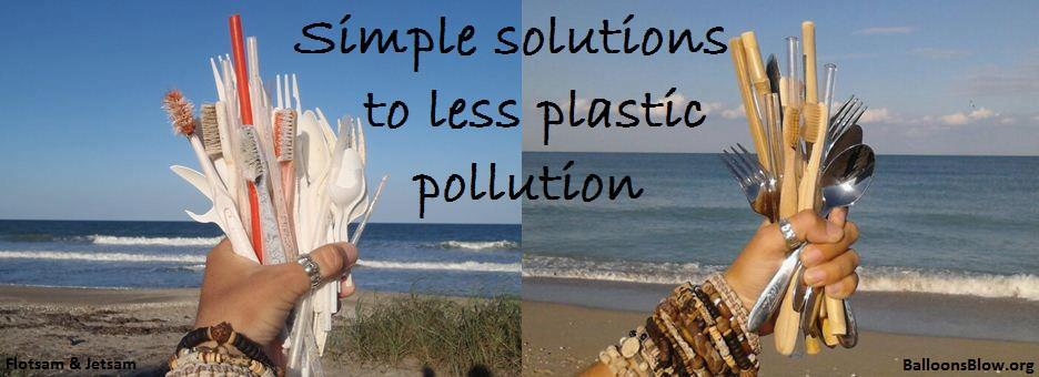 Simple Solutions to Less Plastic Pollution