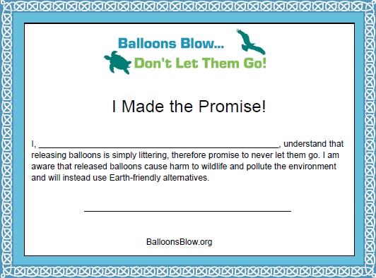 I Made the Promise Certificate Snapshot