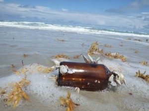 Glass bottle with goose barnacles