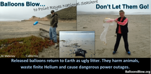 Mylar balloons found polluting Point Reyes National Seashore.