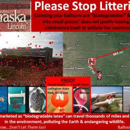 University of Nebraska Lincoln Balloon Releases