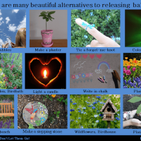 Beautiful Alternatives to Releasing Balloons