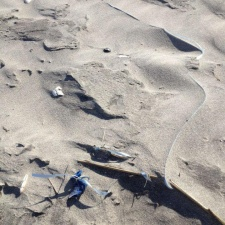 Balloons buried under the sand