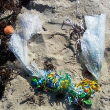 mylar balloons and ribbons litter