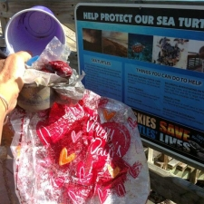 Help protect our sea turtles sign