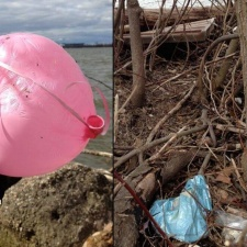 Mylar and Latex Balloons polluting water