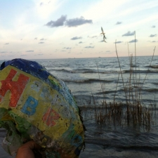 mylar balloon spoils the Louisiana shoreline