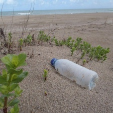 Single-Use Plastic Water Bottle Debris on Beach
