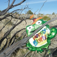 mylar balloon trapped in Nevada's high country