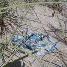 old mylar balloon rotting in the dunes
