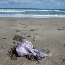 mylar balloon polluting seashore