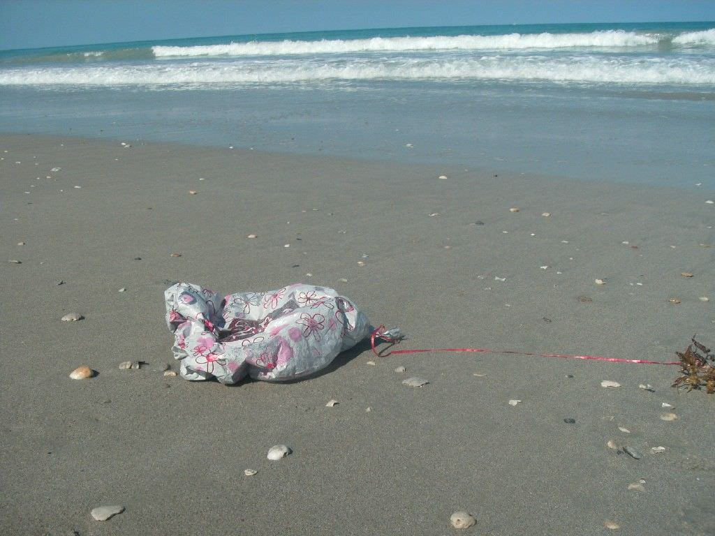 Broken Balloon with String on Beach