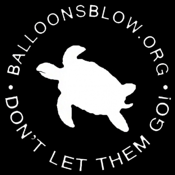 white sea turtle balloons blow logo