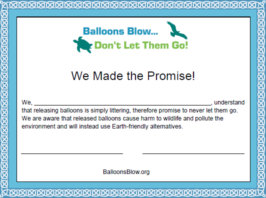 We Made The Promise Certificate Snapshot