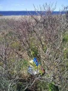 Metinic Island - Balloon Debris