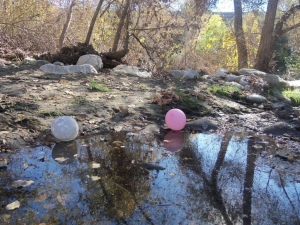 Rose Bowl balloons in newly restored stream area