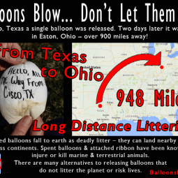 Cisco, TX Balloon Littering