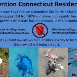 Connecticut Bill Number 5879