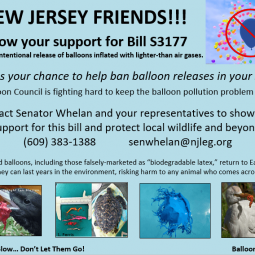 New Jersey Residents – Support Bill S3177