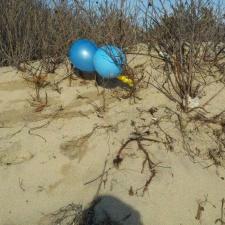 balloons littering Connecticut Beach