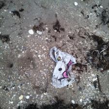 Mylar balloon on florida beach