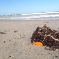 Latex Balloon on beach