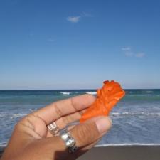 Balloon Found on Beach