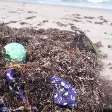 Latex balloons on beach