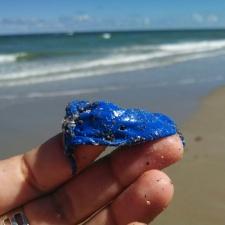 nibbled blue latex balloon