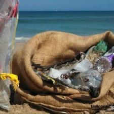 Balloons, plastic pollution
