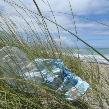 mylar balloon littering sea grass