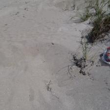 Balloon Litter on Beach near Sea Oats