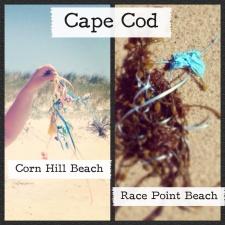 Balloon litter on Cape Cod