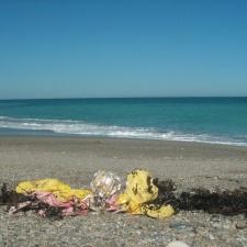 Balloons littering seashore