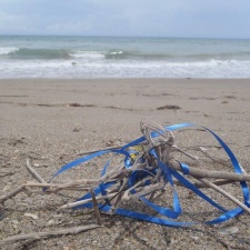 Blue ribbon from latex balloon trash on beach