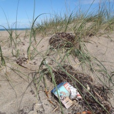 Cliff Bar wrapper left on beach