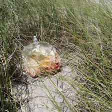 Faded mylar balloon litter in sea grass