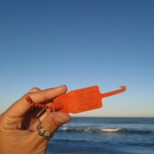 Florida Department of Environmental Protection Orange Plastic Tag found on beach