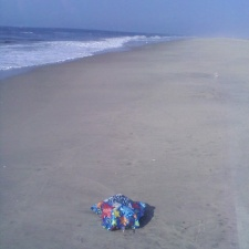 birthday balloon littering beach