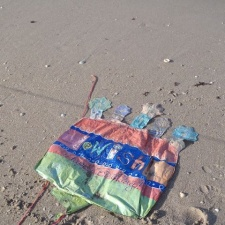 birthday mylar balloon litter on beach
