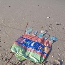 birthday mylar balloon litter on beach