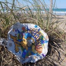 mylar balloon in the sea oats