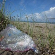 Happy birthday mylar balloon polluting beach