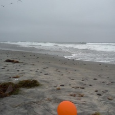 Latex balloon on Cardiff State Beach, California