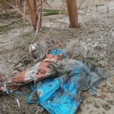 Litter on beach - mylar balloons and ribbons