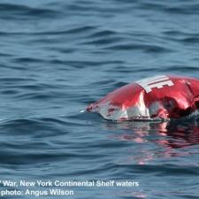 Mylar balloon 88 miles off Long Island, NY