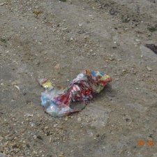 Mylar balloon polluting New Jersey beach