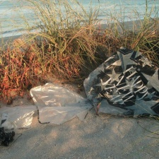Mylar balloon had a 59-day journey before landing as litter on our beach